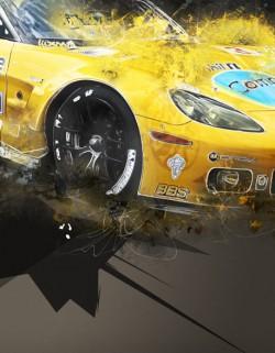 Corvette C6R 2010